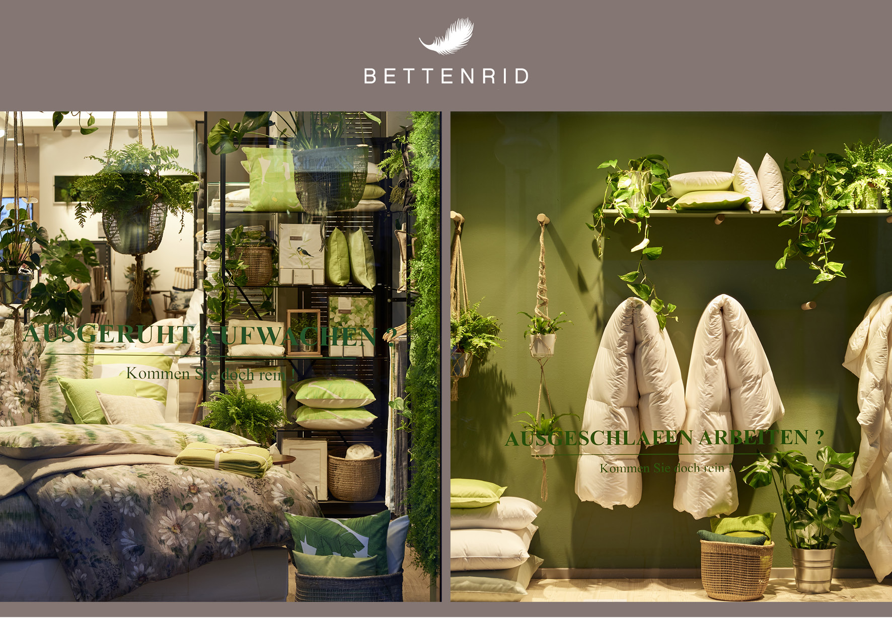 BETTENRID  Living Garden